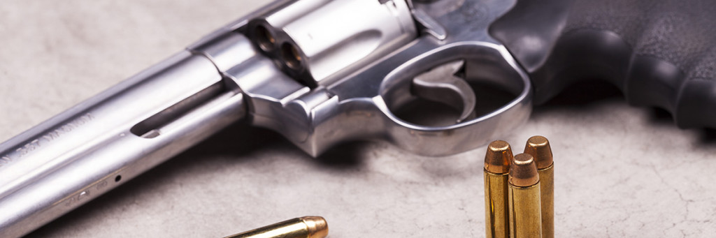 Vapenlicens måste sökas om vapen ska få brukas lagligt